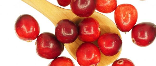 cranberry-uti