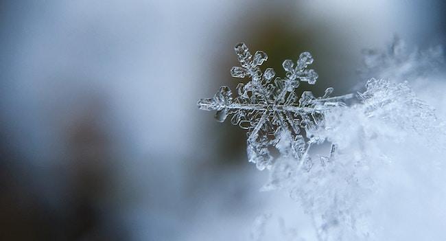 cycle-winter-bleed-aaron-burden